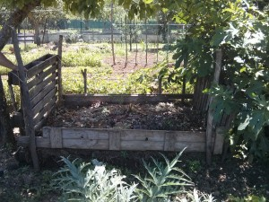 Cassa di compostaggio all'ombra di alberi