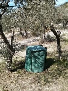 Composter all'ombra di 2 arbusti di ulivo