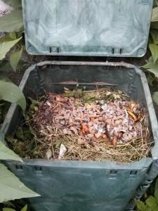 Bucce di ortaggi con piccole potature e sfalci d'erba